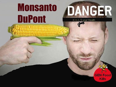http://www.seattleorganicrestaurants.com/vegan-whole-foods/gmo-harms-dangers/
